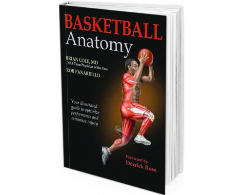 2016 - Basketball Anatomy